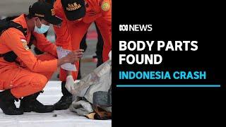 Body Parts Debris Found In Ocean After Plane Crash Off Indonesia Abc News