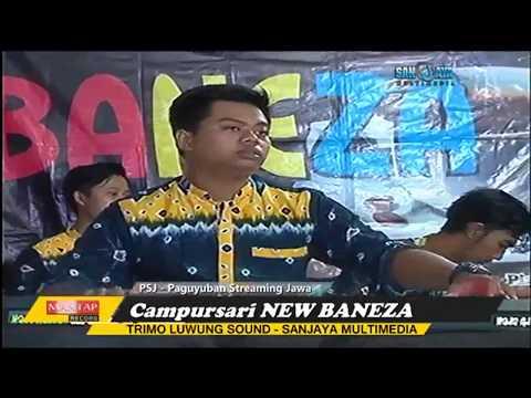 TIADA GUNA (Diana Viola) Campursari NEW BANEZA 2017