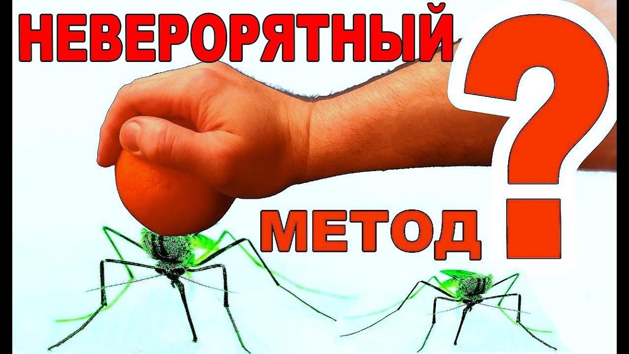 """Защита от комаров. Средство от комаров """"своими руками"""". Отпугиватель насекомых из фруктов"""