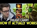 MIRACLE [Treant Protector] How it Actually Works Carry Gameplay 7.22 Dota 2