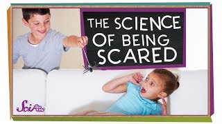 The Science of Being Scared
