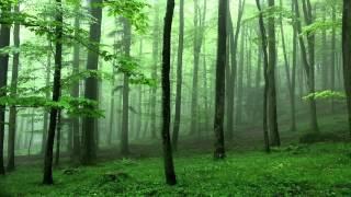 Ei Katha Ti Mone Rekho | Relaxing Piano Instrumental | Tagore Song 03