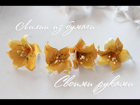 Видеозапись Цветы из бумаги своими руками. Лилии. Скрапбукинг мастер класс