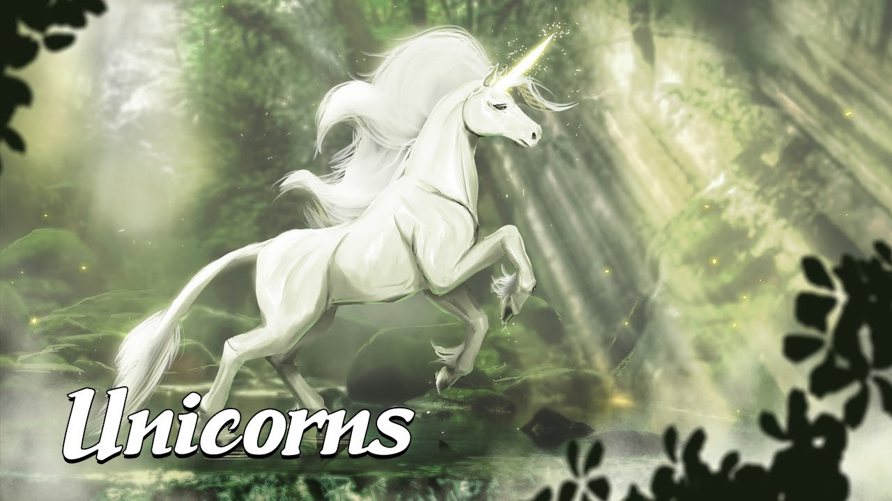The History of Unicorns (Mysterious Legends & Creatures #7)