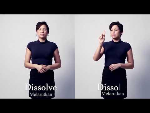Ilmu Pengetahuan Dalam Bahasa Isyarat   Lydia Callis Juru Bahasa Isyarat New York Times Article on S