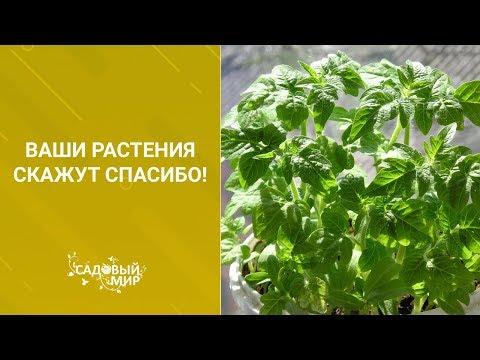 Как сделать землю в горшке с цветами воздушной. Ваши растения скажут СПАСИБО!