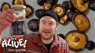 Brad Makes Fermented Mushrooms | It's Alive @ Home | Bon Appétit