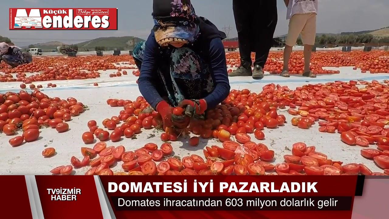 DOMATESTE HEDEF 1 MİLYAR DOLAR