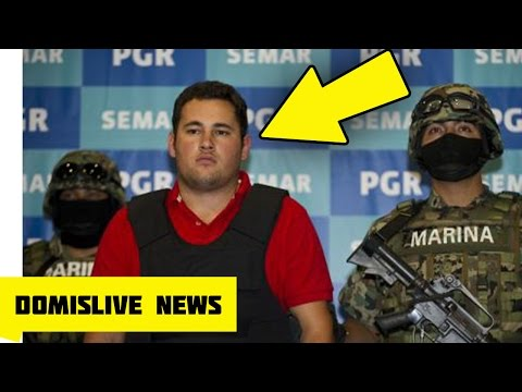 Son of 'El Chapo' KIDNAPPED by Rival Cartel (Jesus Alfredo Guzman)