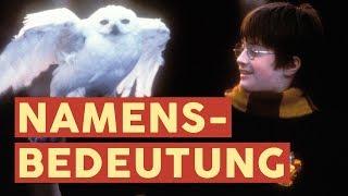 Sirius, Minerva und Co.: Was bedeuten die Namen aus Harry Potter? | FILME