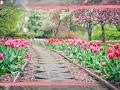 best free beautiful nature HD photographs wallpaper photo image pics