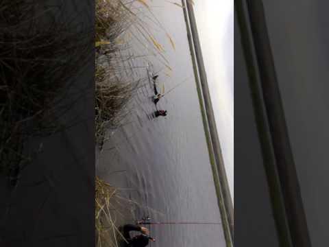 Рыбалка тургай