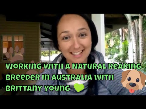 Working with a Natural Rearing Breeder in Australia with Brittany Young (The Pet Girl)