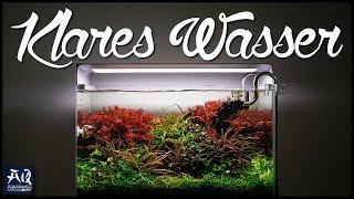 NIE WIEDER TRÜBES WASSER | AquaOwner