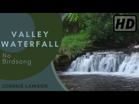 Forest Waterfall-Nature Sounds W/O Bird song-Relaxing Sound of Water-Relaxation-Mindfulness