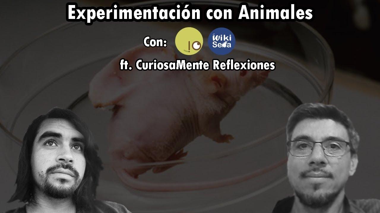 Experimentación con Animales | ft. Tonatiuh Curiosamente Reflexiones
