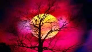 Amr Diab 2osad 3einy [Guitar Instrumental]