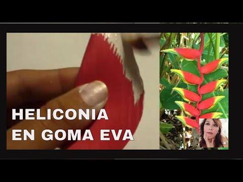 Heliconia en goma eva moldeado de flores ex ticas youtube - Flores sencillas de goma eva ...