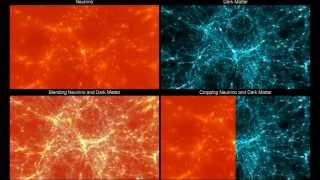Neutrino and Dark Matter - 3D Density Field Interaction