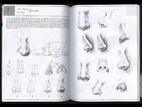 Drawing Human Anatomy Giovanni Civardi Pdf