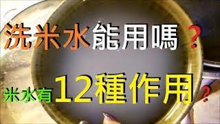 ????洗米水能用嗎? 米水有12種作用? (momo日常洗米, 蒸飯 片段)