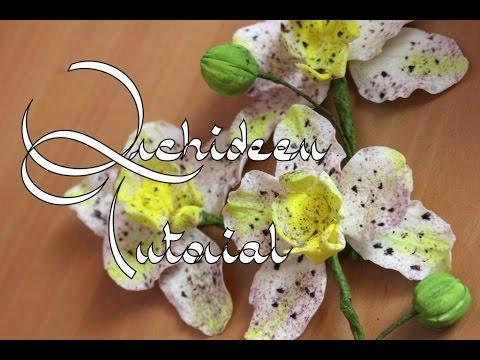 Zucker-Orchideen Anleitung I Gumpaste Orchid Tutorial I Fondant I ...