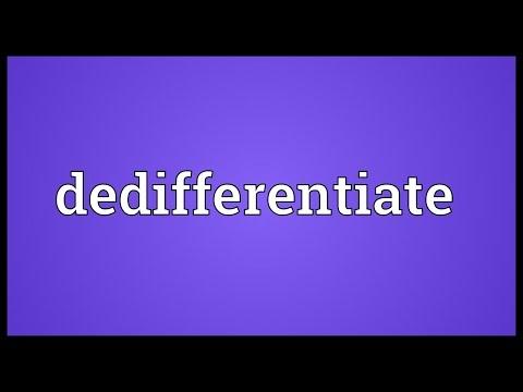 Header of dedifferentiate