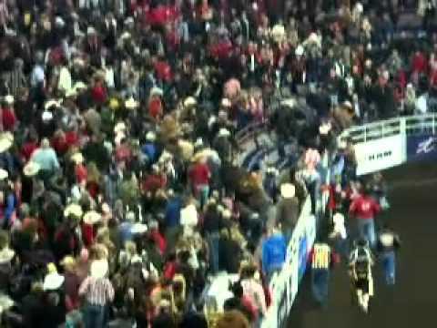 Video bò chiến 500 kg nhảy qua rào húc khán giả   VTC News 2