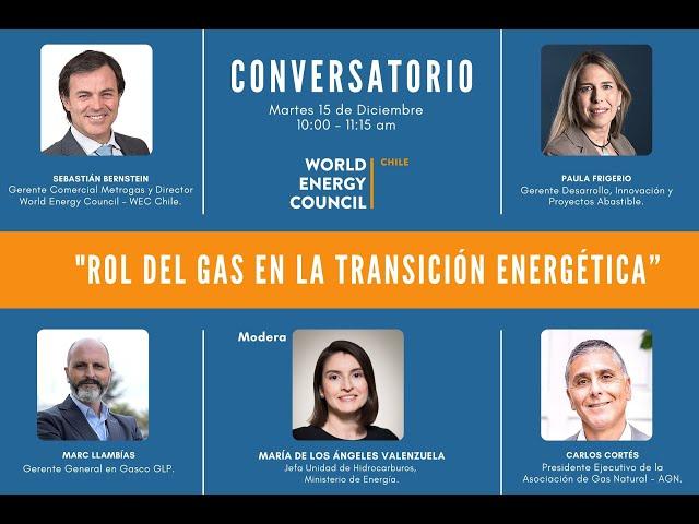 Rol del Gas en la Transición Energética