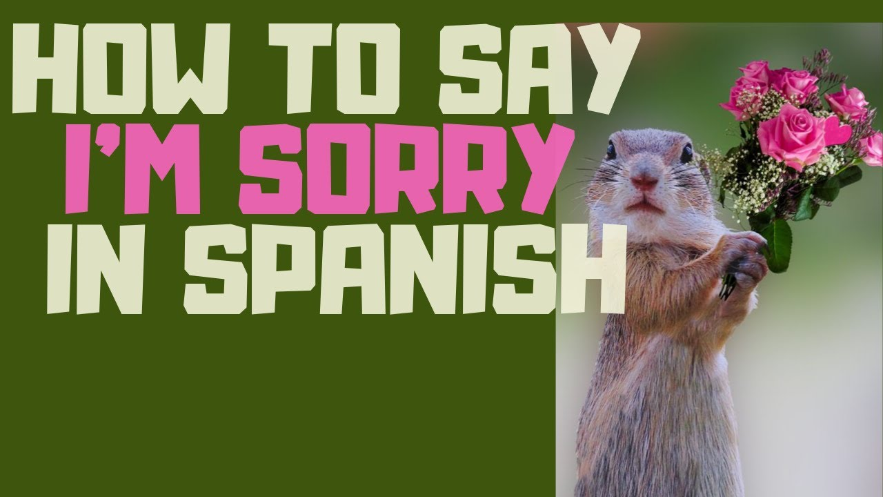 How Say Your Mean Spanish