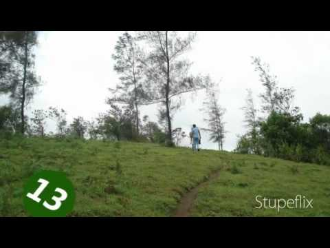 Lost In Forest Resorts Thekkady