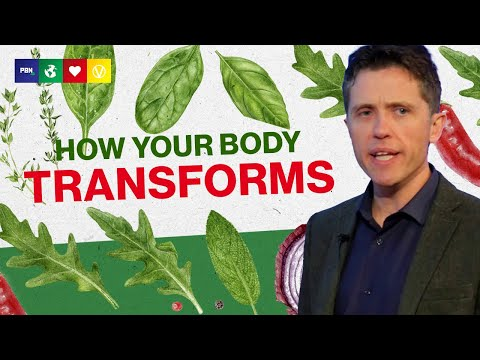 What A Plant Based Diet Does To Your Body? 28 Days on a Vegan Diet