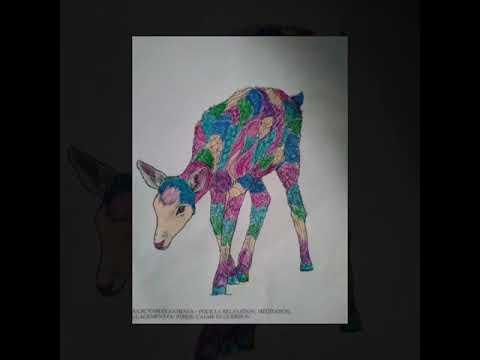 antiestres-libro-de-colorear-para-adultos:-hermosos-animales---mandalas-para-relajación-y-meditación