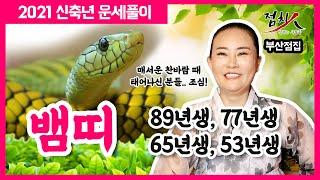 [부산점집] 뱀띠운세 2021년 신축년 띠별운세 6탄!! 33세, 45세, 57세, 69세 내년운세 89년생…