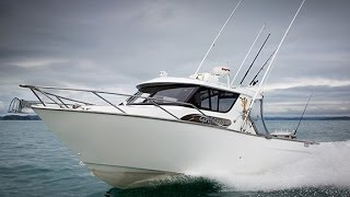 WHITE POINTER 940 PRO SPORTSMAN  BEST NEW ZEALAND TRAILERBOATS
