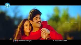 Nuvvante Nakishtam Video Song - Santosham Movie -Nagarjuna, Gracy Singh, Shriya Saran