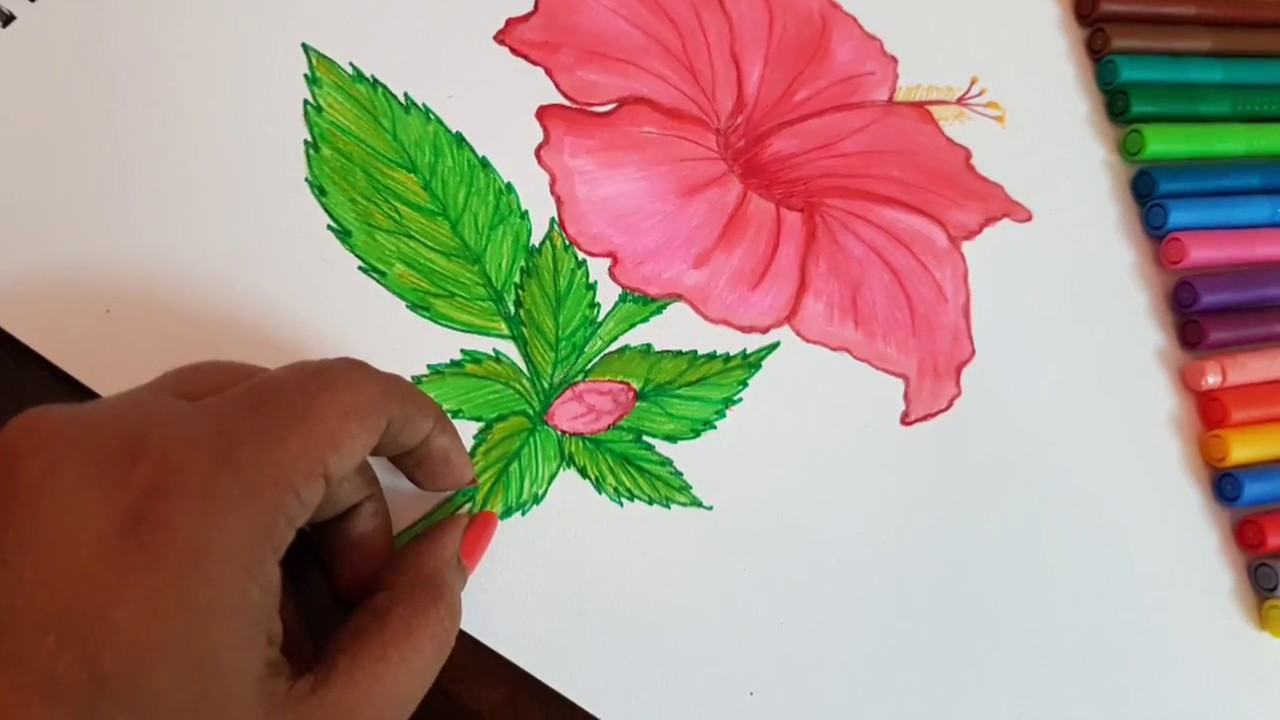 How to make hibiscus flower step by step gudhal ka phool in hindi how to make hibiscus flower step by step gudhal ka phool in hindi izmirmasajfo
