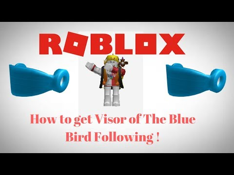ROBLOX: Promocode: How to get Visor of the Blue Bird ...