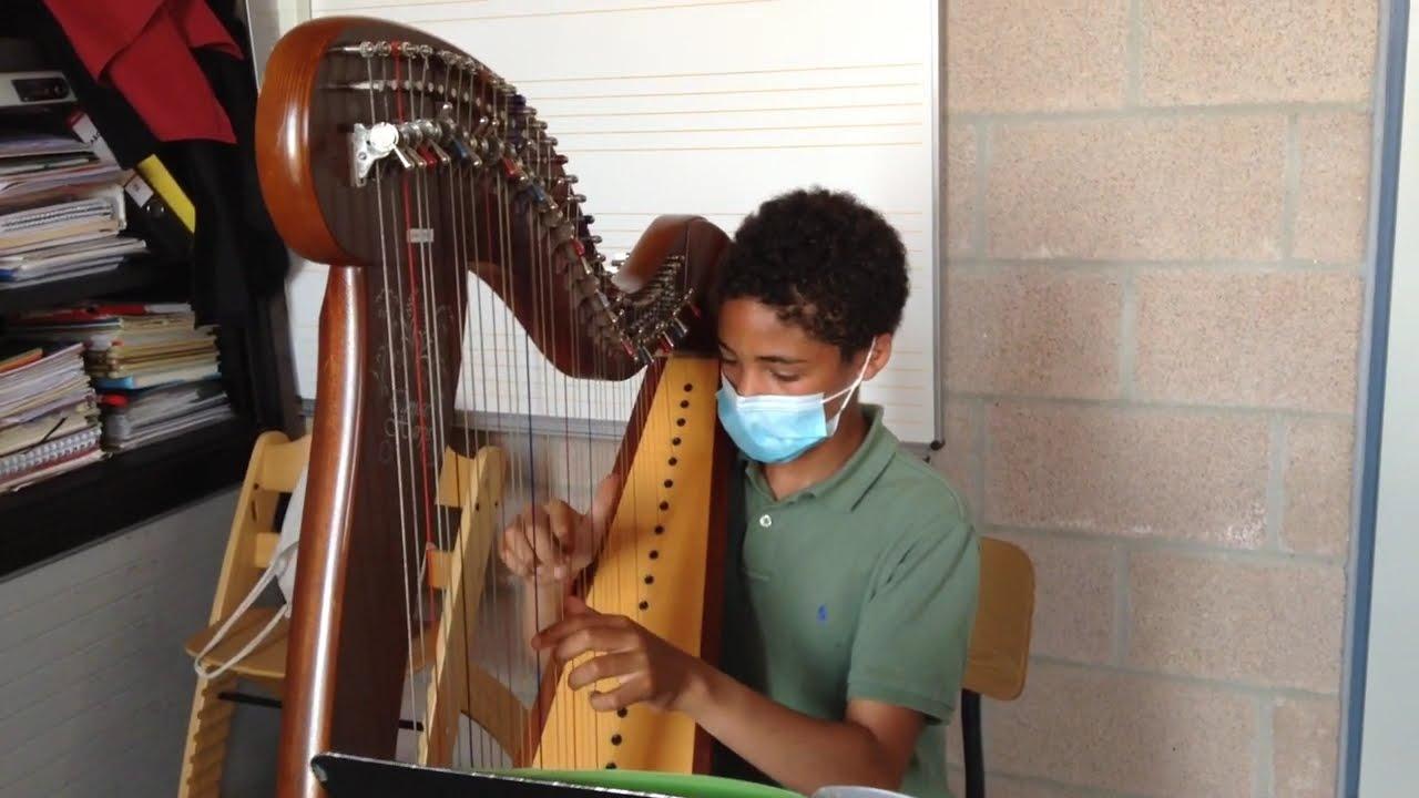 Harp klassiek