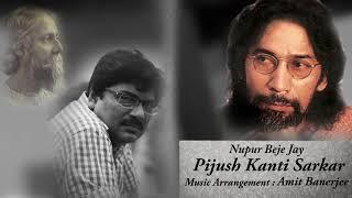 Nupur Beje Jay | Pijush Kanti Sarkar | Amit Banerjee