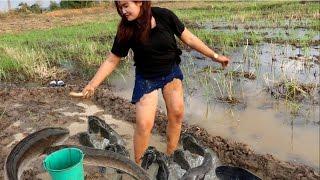 Amazing beautiful girl Fishing in Cambodia - How to Fishing at Battambang - By New York ( part 080)