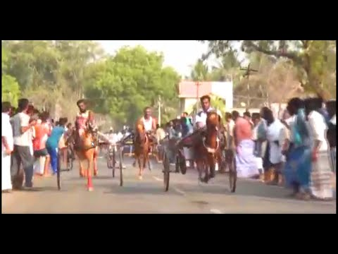 Vairivayal horse race 2017