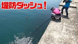 堤防から夜の魚を昼に狙って釣り上げる‼