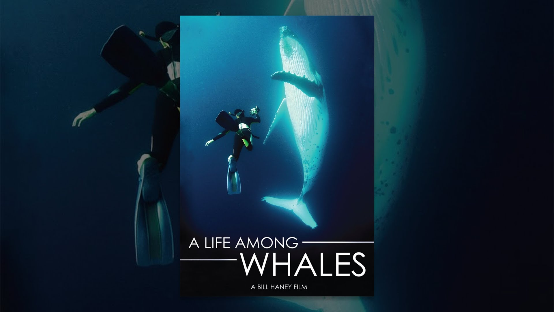 A Life Among Whales (FULL DOCUMENTARY)