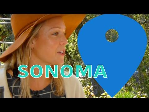 Sonoma County: Probiotics and the Future of Health