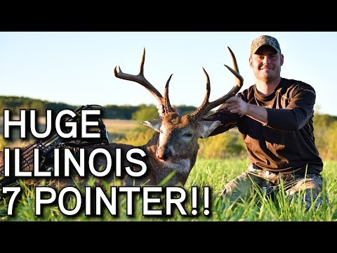 Illinois Mid-October Monster! | Giant 7 Pointer With A Bow!