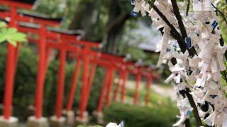 金沢 東山ひがし茶屋街 金沢神社