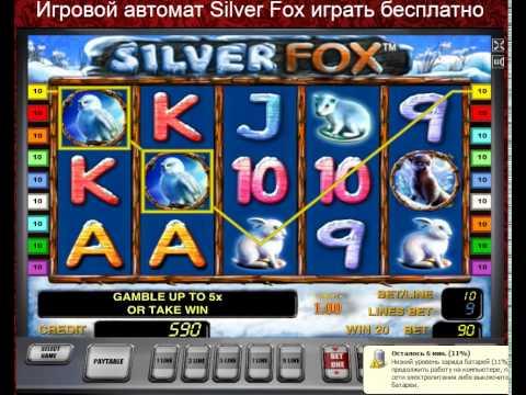 контакты казино плей фортуна