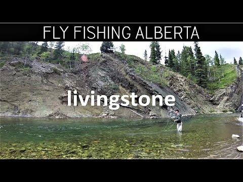 Fly Fishing Livingstone River Alberta Canada August - Trailer for Full Show on Amazon Video Season 4