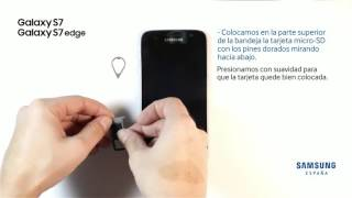 Cómo  colocar las tarjetas nano SIM y micro SD en Samsung Galaxy S7 y S7 Edge
